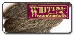 Coq de Leon Hen Cape Whiting