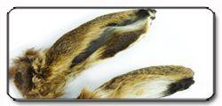 Orecchie di lepre (Hares Ears)