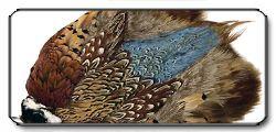 Ringneck Pheasant Complete Skin