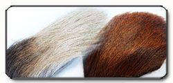"""Pelo di alce """" Elk Hair """""""