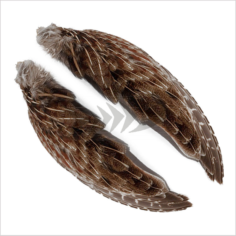 English Partridge Wings   Wing and Hackle fly tying material