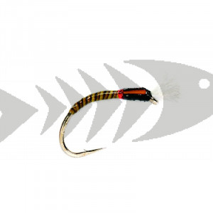 Quill Buzzer Olive| Coregonus - Grayling - Trout nymph