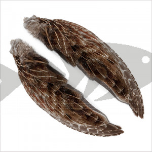 English Partridge Wings | Wing and Hackle fly tying material