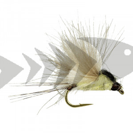 CDC - Spent Partridge