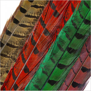 Pheasant Tail Feathers - most common fly tying material