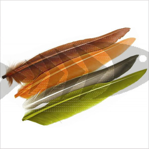 uck Quills | Wing and tail fly tying material