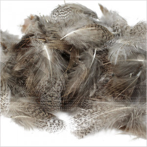 English Partridge Feathers Grey Neck | Wing fly Tying material