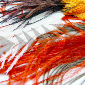 Ostrich Feathers | Body and tail fly tying material