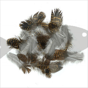 Veniard Grouse Plumage Feathers | Wing fly Tying material