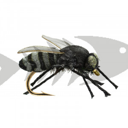Gad Fly