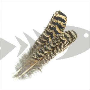 Speckled Turkey Quill Feathers | For dry- wet and wing flies