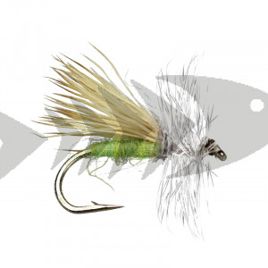Apple Caddis Adult