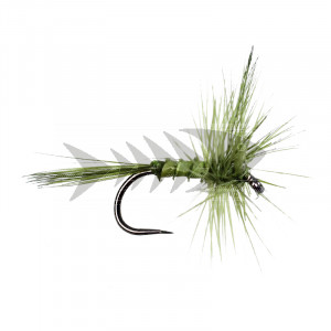 Olive Quill BL