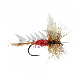 Red Spinner BL