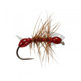 Red Epoxy Ant BL