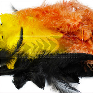 Metz soft hackle feathers