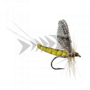Spinner Realistic Wings - Olive