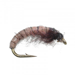 Pale Pink Larva