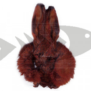 Hare´s Mask fiery brown