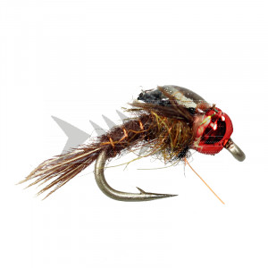 Beaver Hole Special red