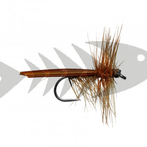 Brown Stone Fly BL