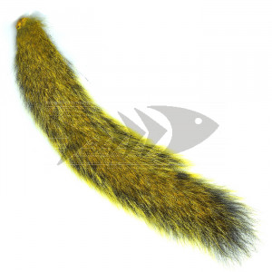 "Coda di scoiattolo "" Squirrel tails "" col. yellow"