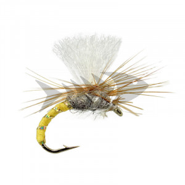 Klinkhammer Brown Yellow